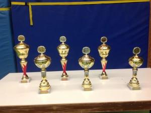 Diese Pokale gibt es bei der mittelfränkischen Schachmeisterschaft 2013 in Wachendorf zu gewinnen.